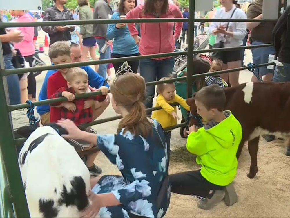 Dairy Month Begins With Cows On The Concourse
