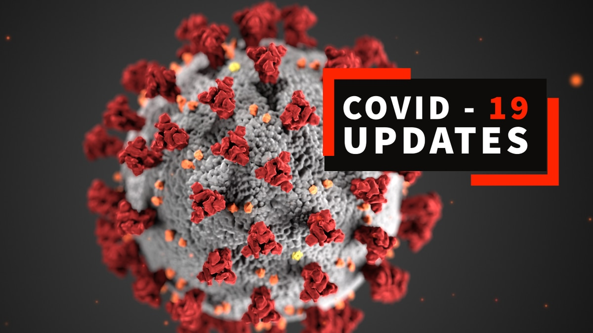 (This image of the COVID-19 virus provided by the CDC.)