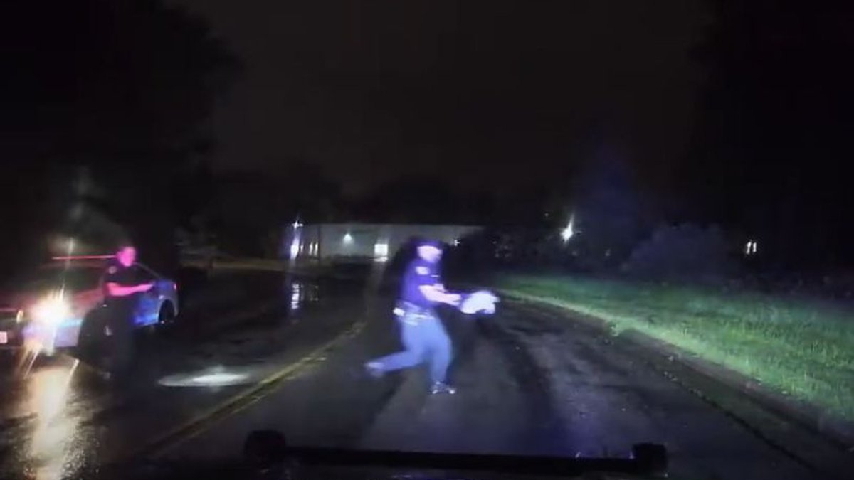 Madison police officers help save a snapping turtle along a road on the city's south side...