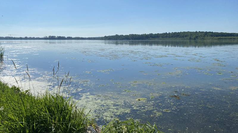 Wisconsin DNR releases new fish consumption advice in Dane and Rock County waterways