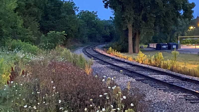 A pedestrian is dead after being hit by a train Thursday night.