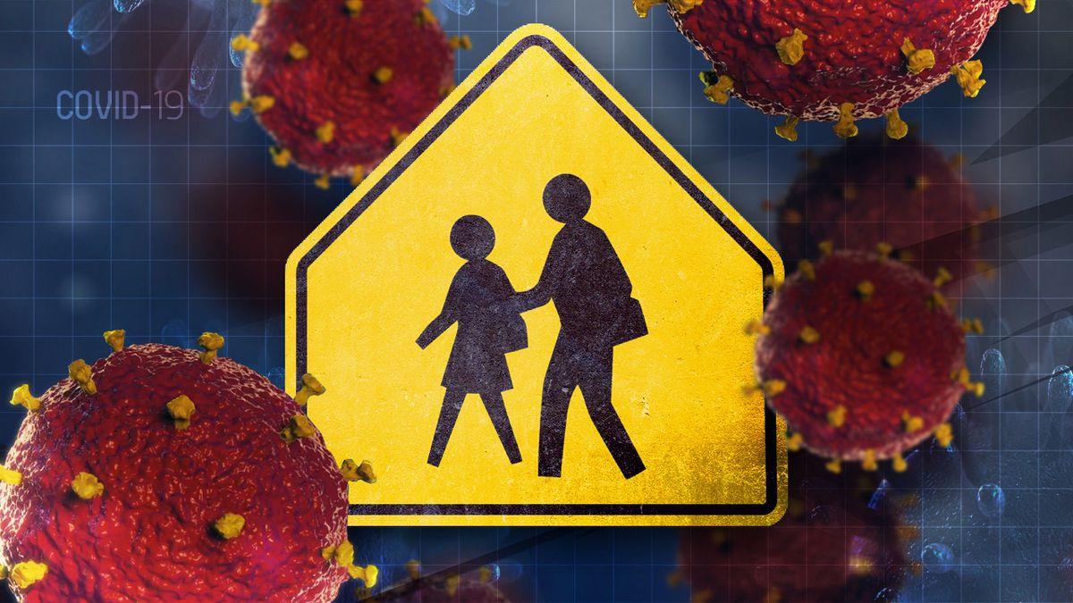 Coronavirus and schools