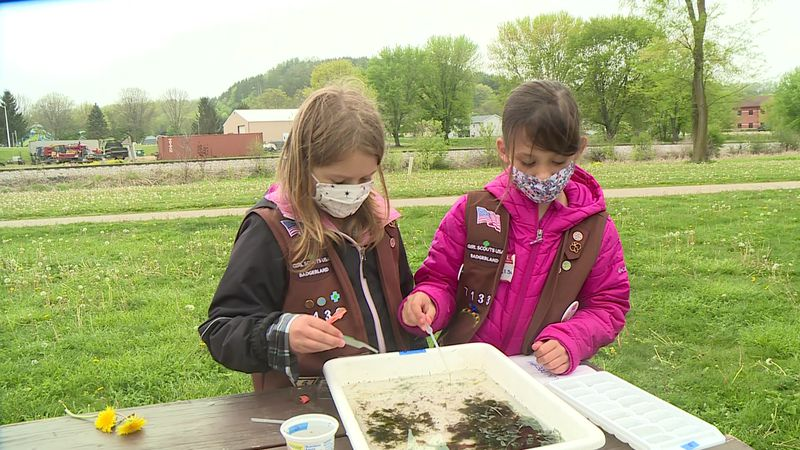 Brownies remove New Zealand mud snails from Black Earth Creek and learn about conservation.