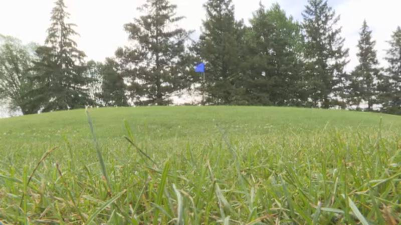 Crews at Vitense have taken special measures in watering and mowing to preserve the grass on...