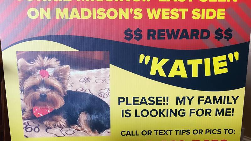 This sign can be found all over the westside of Madison. They've been up for the past two years.
