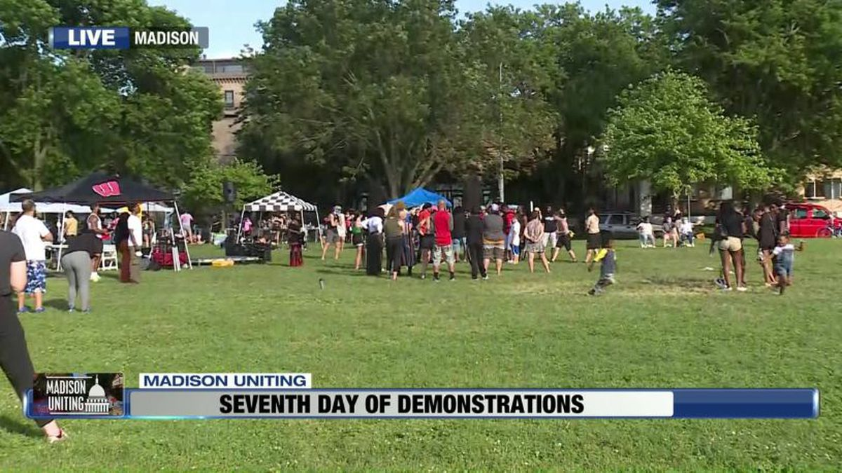The protest at James Madison Park on Friday (Source: WMTV)