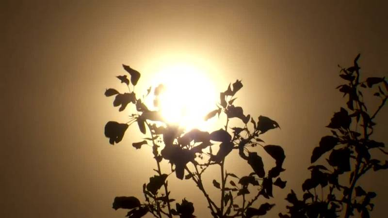 A combination of heat and drought is making the summer challenging in the West.