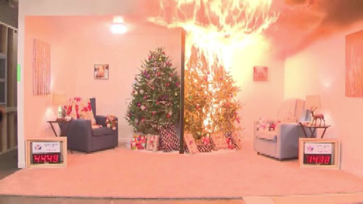 A fire department display showing what flames can do to a Christmas tree.