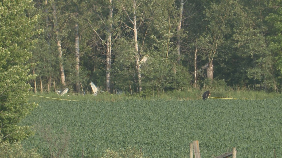 Plane crashes in Clark County on June 30, 2021