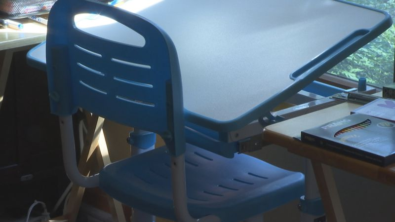 An Appleton family is preparing for school to start virtually next week, setting up a...